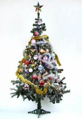 Christmas tree by Suat Eman, courtesy of freedigitalphotos.net