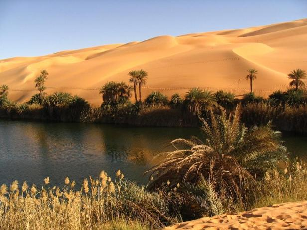 Libyan desert oasis